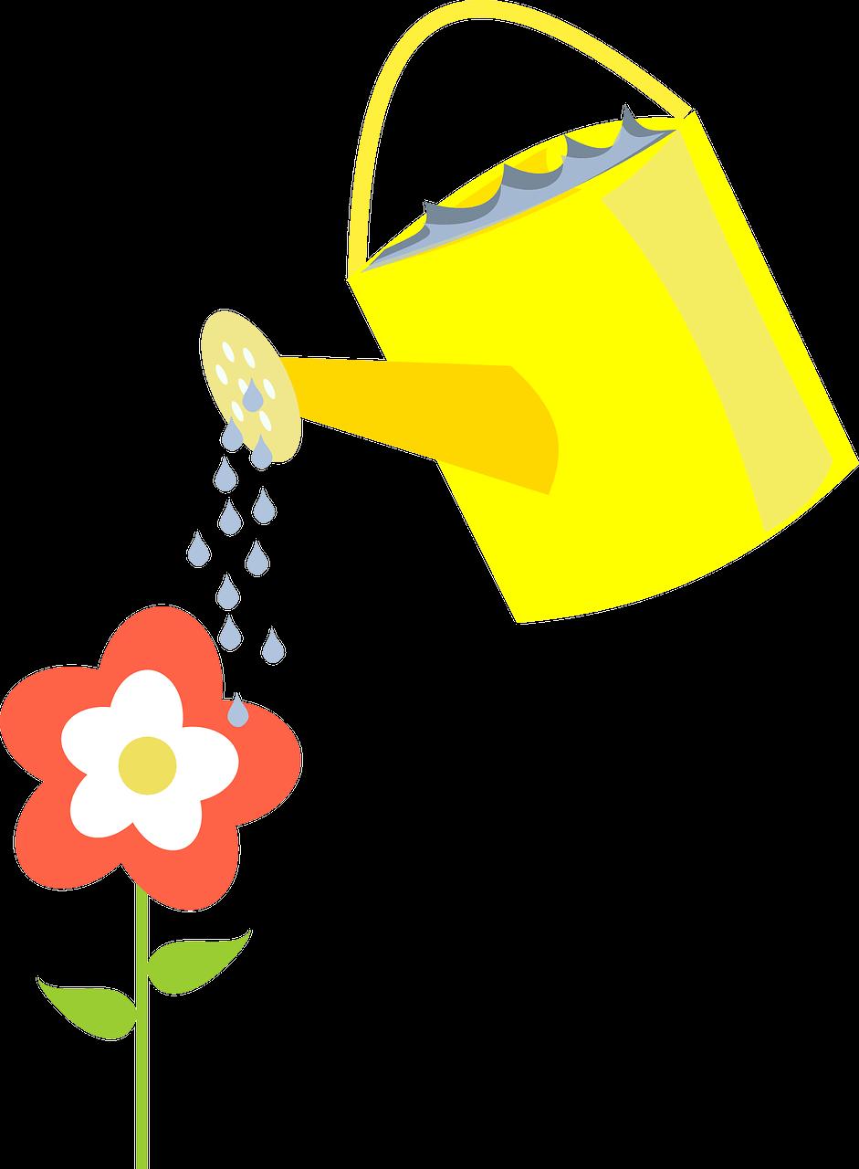 agua cada dia